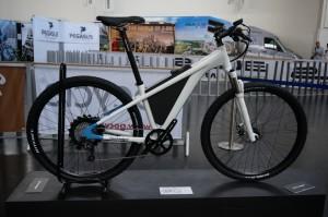 Electrolyte Vorradler, az egyik gyönyörű elektromos kerékpár